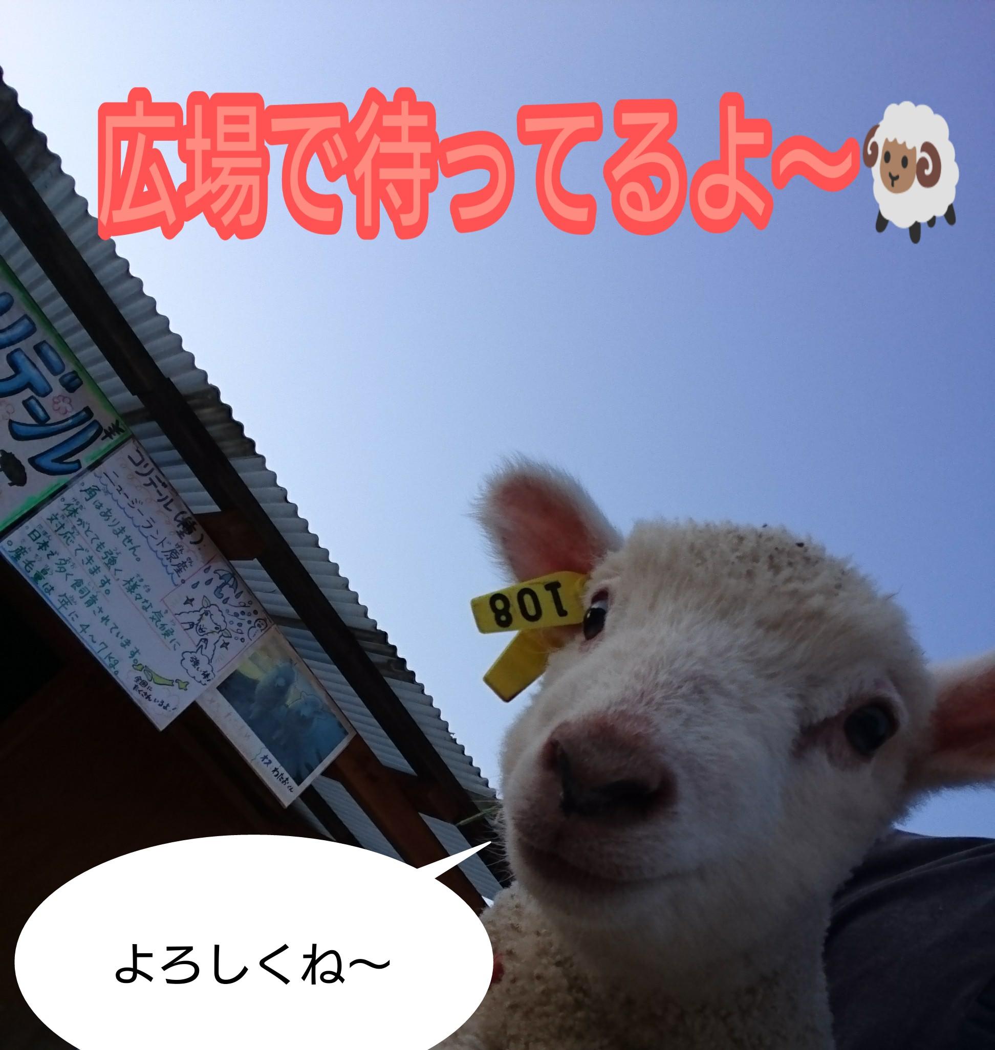 PicsArt_04-21-02.17.43.jpg